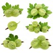 Set ripe green gooseberries with leaves (isolated) — Stock Photo #76137501
