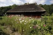 Old village near Sanok, Poland — Stock Photo