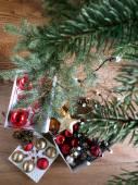 Árvore de Natal secada após a temporada de férias — Fotografia Stock
