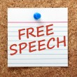 Free Speech — Stock Photo #61770003