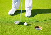 Detail Photograph of Man Putting Golf Ball into the Hole — Foto Stock