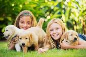 Cute Young Girls with Puppies — Stockfoto