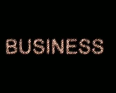 Business.Animation. — Stock Video
