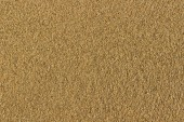 Natural sand — Stock Photo