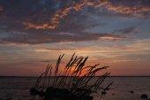 Ocean Sunset — Stock Photo