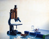 Science education  — Stock Photo