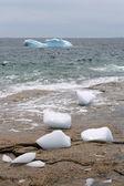 Iceberg e rock — Fotografia Stock