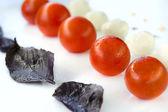 Mozzarella and tomatoes in line — Stockfoto