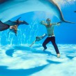On the bottom of the dolphinarium — Stock Photo #57763469