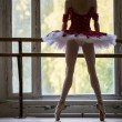 Elegant young ballerina standing near a large window in a dance  — Zdjęcie stockowe #63251495