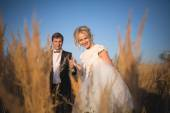 Young wedding smartly dressed couple goes on a field with high e — Stockfoto