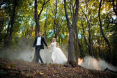 Young wedding couple goes on a picturesque forest. Husband leads — Fotografia Stock