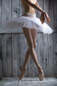 Studio shot, young legs graceful ballerina — Stockfoto