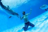 Men and two dolphin — Stock Photo