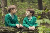 Portrait of a two boys — Foto Stock