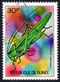Stamp printed in GUINEE — Stock Photo