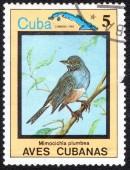 Stamp shows Mimocichla plumbea — Foto de Stock