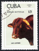 Stamp shows SANTA GERTRUDIS — Stock Photo