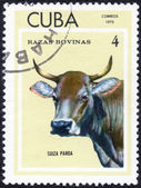 Stamp shows SUIZA PARDA — Stock Photo