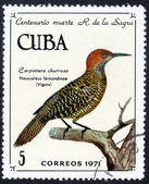 CUBA stamp with Vigors — ストック写真