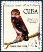 CUBA stamp with  dOrbigny — Stockfoto