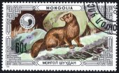 Mongolia stamp with Common weasel — Stock Photo
