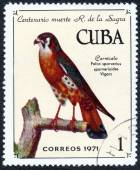 Stamp printed in CUBA — Stock Photo