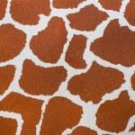 Leather skin of giraffe — Stock Photo #67093405