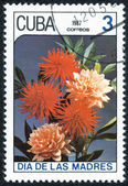 Stamp image  with flowers — Stock Photo