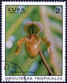 "Stamp shows ""Orquideas tropicales"" — Stock Photo"