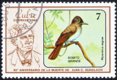 "Stamp series of images ""songbirds"" — Stockfoto"