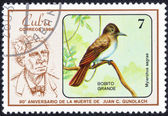 "Stamp series of images ""songbirds"" — Stok fotoğraf"