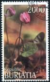 "Stamp of ""herbs Buryatia"" — Stock Photo"