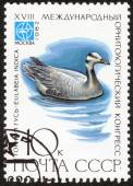 "Stamp of  ""18 International Ornithological Congress"" — Foto de Stock"