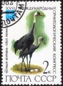 """Stamp of  """"18 International Ornithological Congress"""" — Stock Photo"""