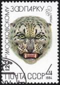 "Stamp of  ""Moscow Zoo, 120th "" — Stock Photo"