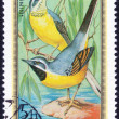 Forest birds stamp — Stock Photo #70773979