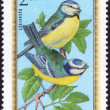 Forest birds stamp — Stock Photo #70773981