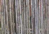Bamboo textured background — Stock Photo