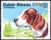Stamp with hunting dog — Stock Photo