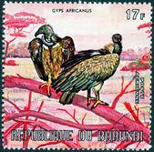 由布隆迪印制的邮票 — 图库照片