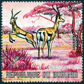 Stamp printed by Burundi — Stock Photo