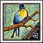 Stamp printed in Guinea — Stock Photo