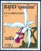 Stamp printed in Kampuchea — Stock Photo