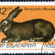 "Stamp with ""breeds of rabbits"" — Stock Photo #74468781"