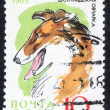 Постер, плакат: Stamp from the USSR