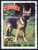 Stamp printed in Korea — Stock Photo