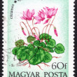 Postage stamp printed in Hungary — Stock Photo #76764565