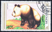 Stamp printed by Mongolia — Stock Photo