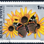 Постер, плакат: Stamp printed in Hungary